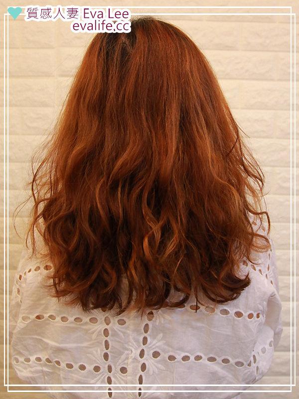 [士林天母] 醫美級染髮剪髮,時尚媽咪必來!明星藝人愛用美髮沙龍 VIF Hair Salon,給我最美的LOB鮑伯頭